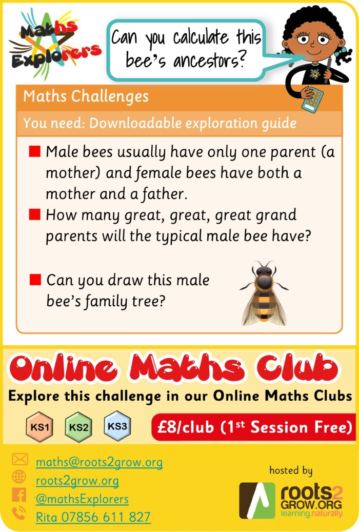 Weekly Challenge - Bees